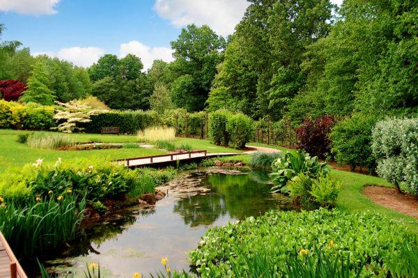 jardin-bambois